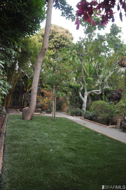 Backyard at 1632 Dolores St. in 2012